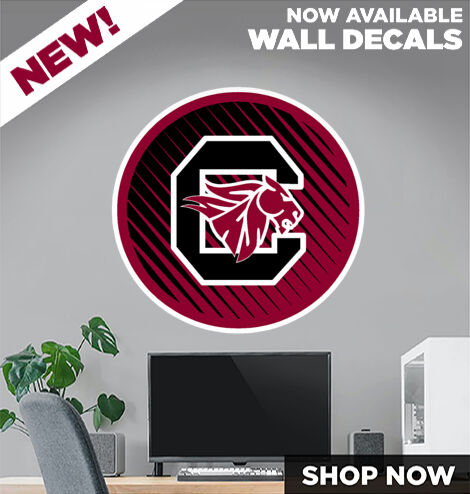 Chatfield Chargers DecalDualBanner Banner