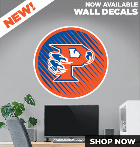 Parkview Panthers DecalDualBanner Banner