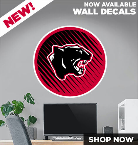 Morehead Panthers DecalDualBanner Banner