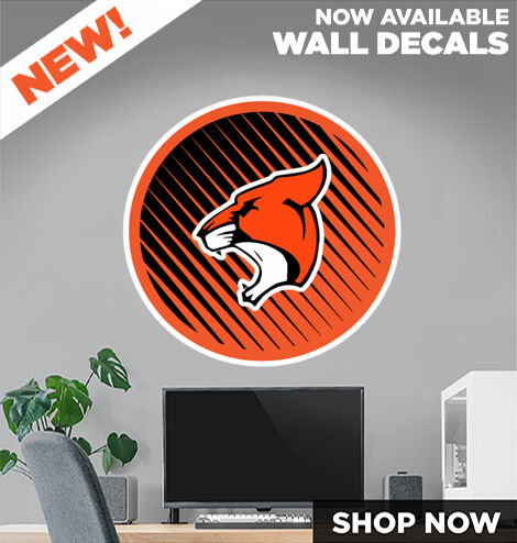 Ainger Cougars DecalDualBanner Banner