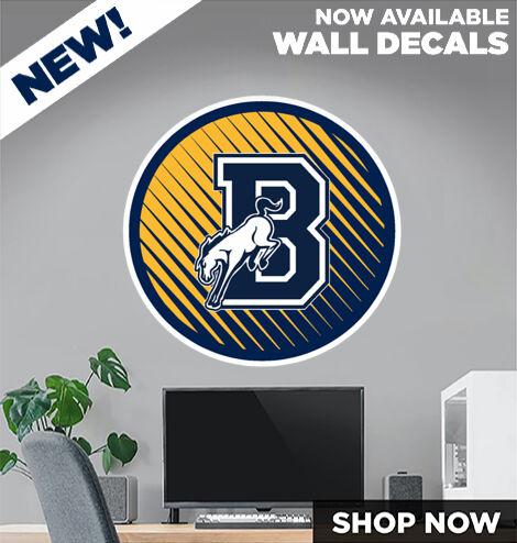 Burrillville Broncos DecalDualBanner Banner
