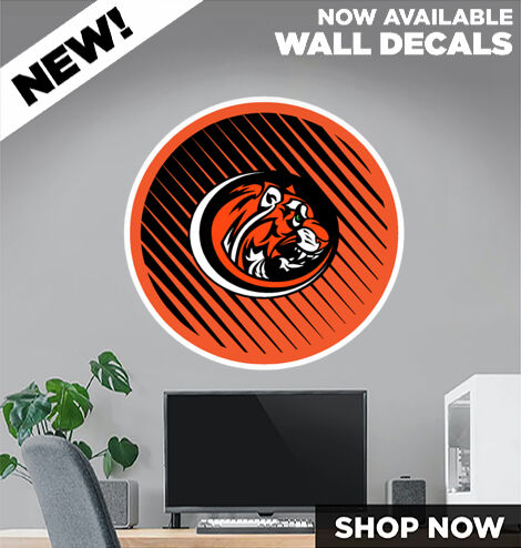 Armada Tigers official sideline store DecalDualBanner Banner