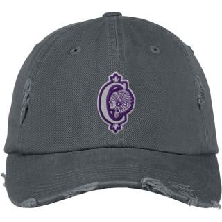 District Distressed Cap